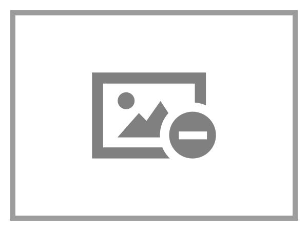 Hp full length card guide kit grafikkarten kit fuer systemgehaeuse fuer workstation z240 5549177 m6w78aa