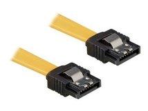 DeLOCK Cable SATA - SATA-Kabel - Serial ATA 150/300 - SATA (W) bis SATA (W) - 30 cm - eingerastet, gerader Stecker