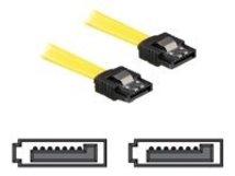 DeLOCK - SATA-Kabel - Serial ATA 150/300 - SATA (W) bis SATA (W) - 20 cm - eingerastet, gerader Stecker