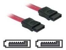 DeLOCK - SATA-Kabel - Serial ATA 150/300 - SATA (W) bis SATA (W) - 30 cm - gerader Stecker