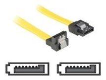 DeLOCK - SATA-Kabel - Serial ATA 150/300 - SATA (W) bis SATA (W) - 30 cm - nach unten gewinkelter Stecker, eingerastet, gerader Stecker
