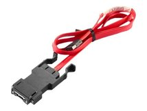 Front Cable - IEEE 1394-Kabel - 80 cm - für ThinkStation P310; P410; P500; P510; P700; P900