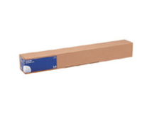 - Glänzend - Rolle (60 cm x 30,5 m) - 250 g/m² - 1 Rolle(n) Fotopapier - für SureColor SC-P10000, P20000, P6000, P7000, P7500, P8000, P9000, P9500, T3200, T5200, T7200