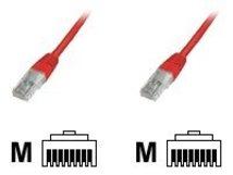 Premium - Patch-Kabel - RJ-45 (M) bis RJ-45 (M) - 1 m - UTP - CAT 6