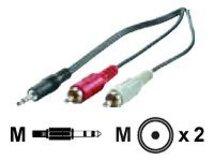 Secomp VALUE - Audiokabel - RCA (M) bis Stereo Mini-Klinkenstecker (M) - 1.5 m