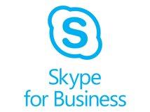 Skype for Business Plus CAL - Abonnement-Lizenz (1 Jahr) - 1 CAL - Microsoft-qualifiziert - Offene Lizenz - Open, Erweiterung für Office 365