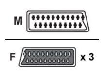 V7 - Video/Audio-Splitter - 20-polig SCART (W) bis SCART (M) - Schwarz