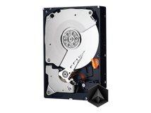 """WD Black WD6003FZBX - Festplatte - 6 TB - intern - 3.5"""" (8.9 cm) - SATA 6Gb/s"""